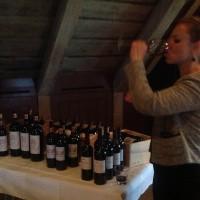 IMG 0929 200x200c Bordeaux veislan mikla