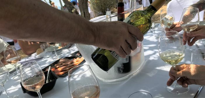 VÍN 101: Hvítu þrúgurnar, ekki bara Chardonnay